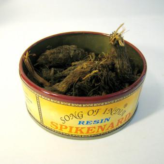 Smoking spikenard / 2-Pack